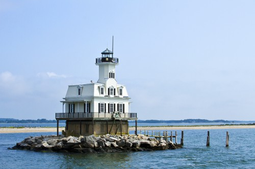 Bug Lighthouse