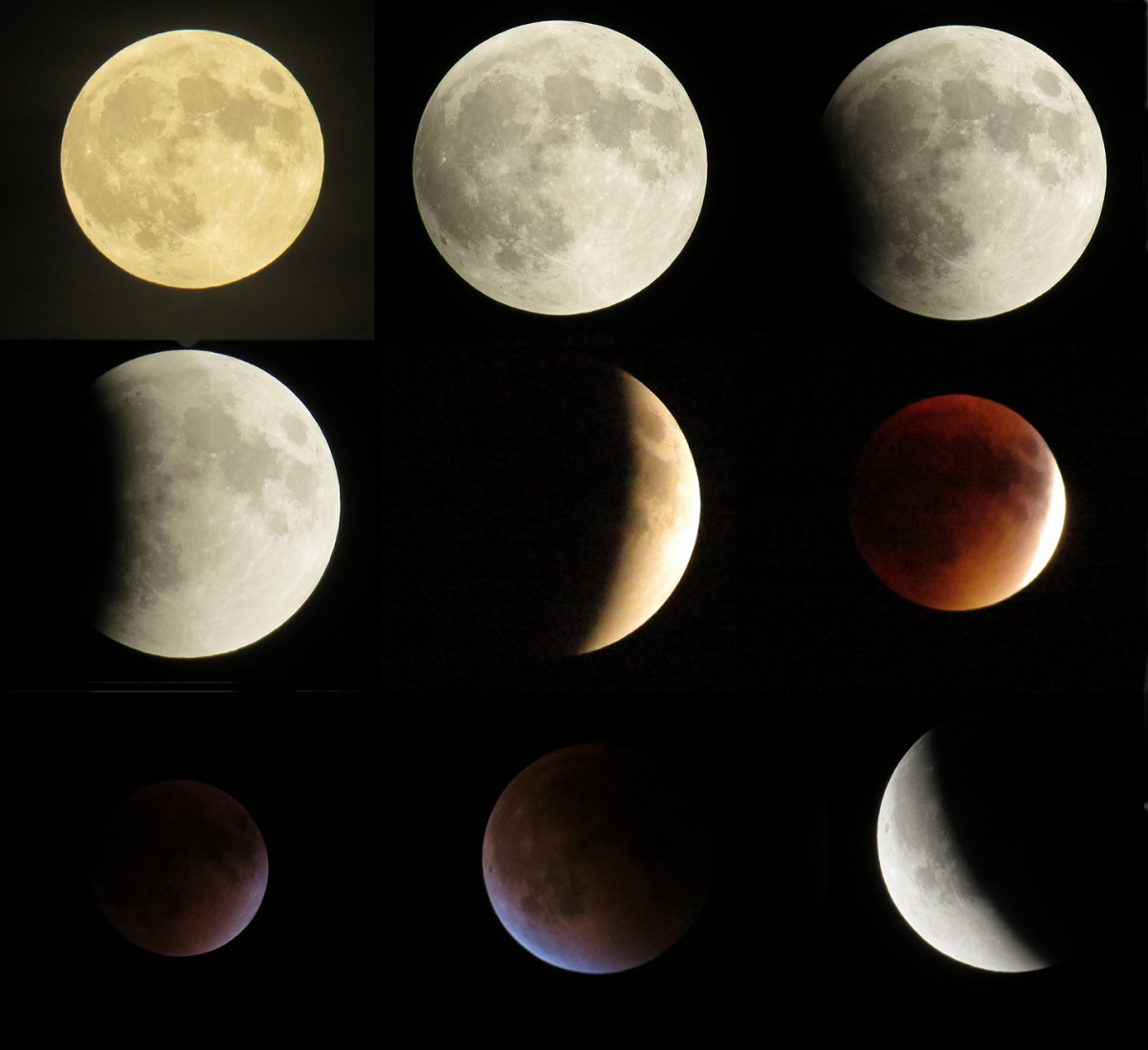 All phases of the super blood moon eclipse