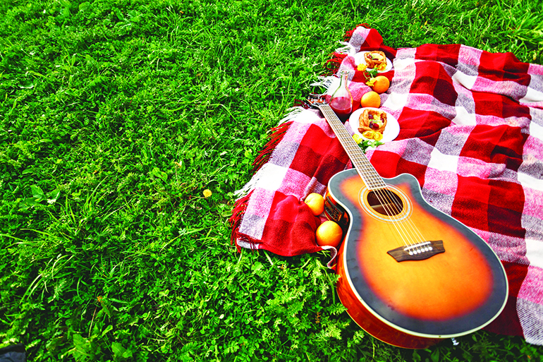 42735847 - picnic with guitar music on grass. summer vacations. selective focus. space for your text.