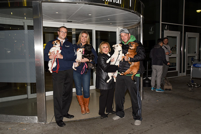 Southampton Animal Shelter team picks up the pups at the airport!