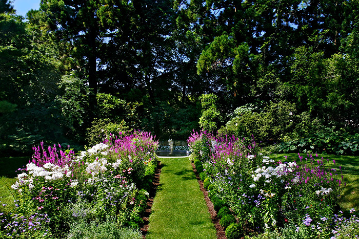Garden and photo by Unlimited Earth Care