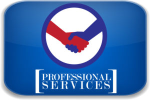 Dan's Best of the Best Professional services category graphic