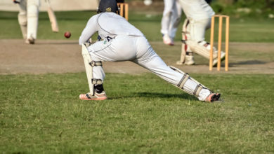 Fancy some cricket? Shelter Island Cricket Club is playing July 30, 2016
