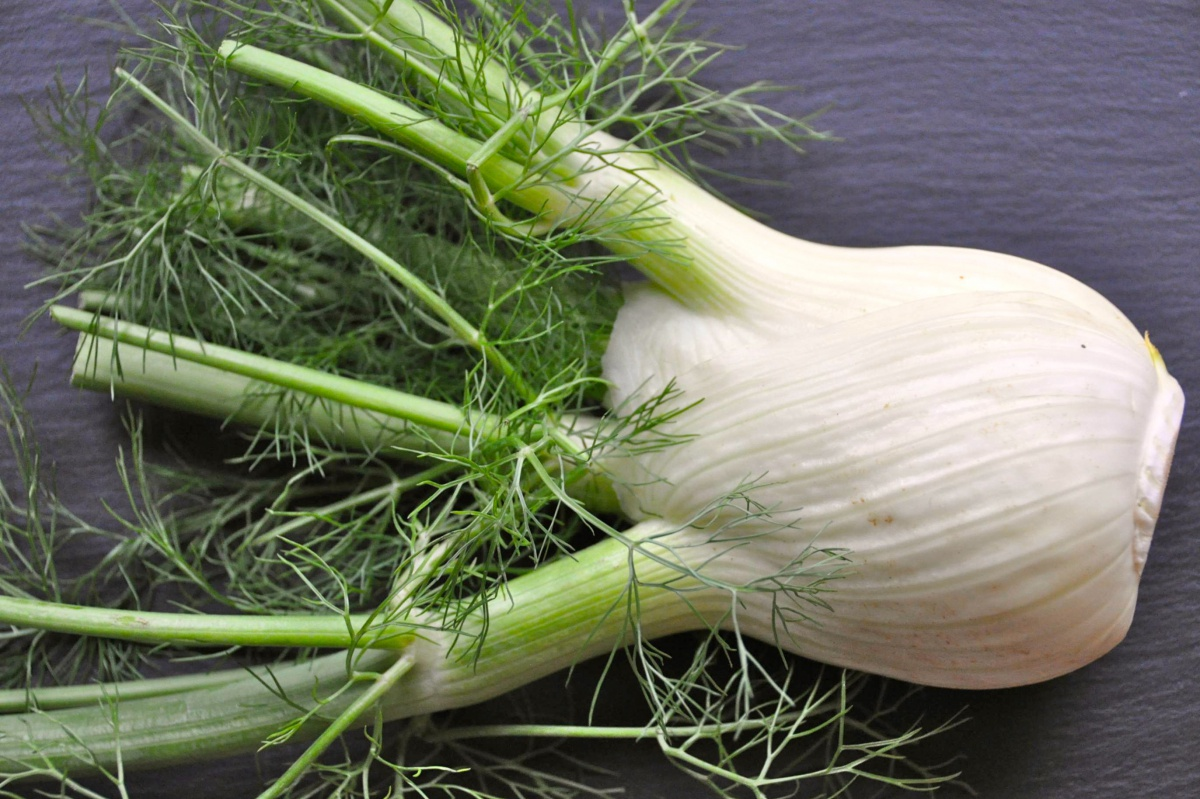 Embrace a fennel bulb today. Photo credit: bigstock.com