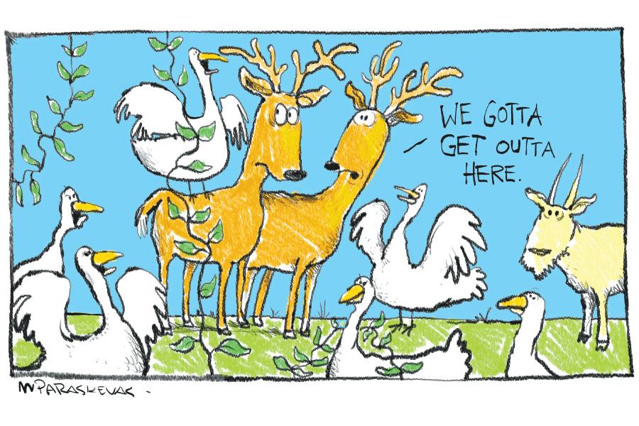 Invasive Species Cartoon By Mickey Paraskevas