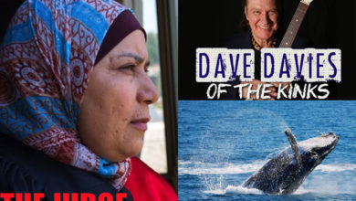 """The Judge,"" Dave Davies, whale"