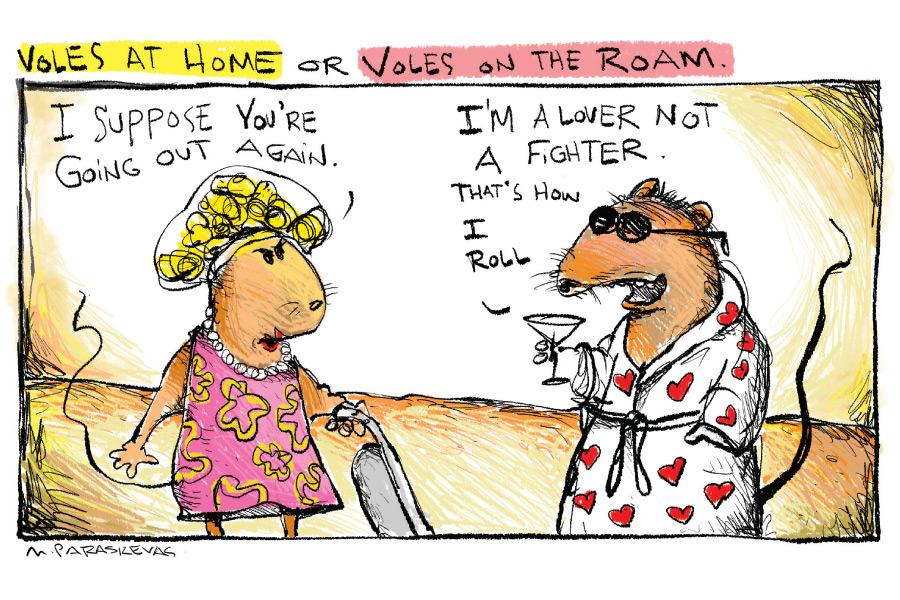 Voles cartoon by Mickey Paraskevas