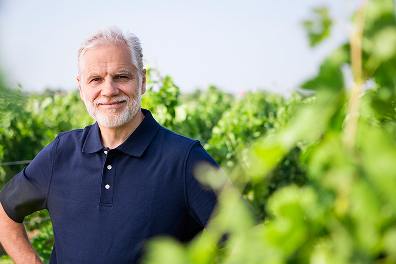 Roman Roth in the vines