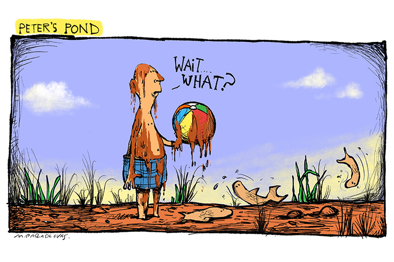 Peters Pond disappears cartoon by Mickey Paraskevas