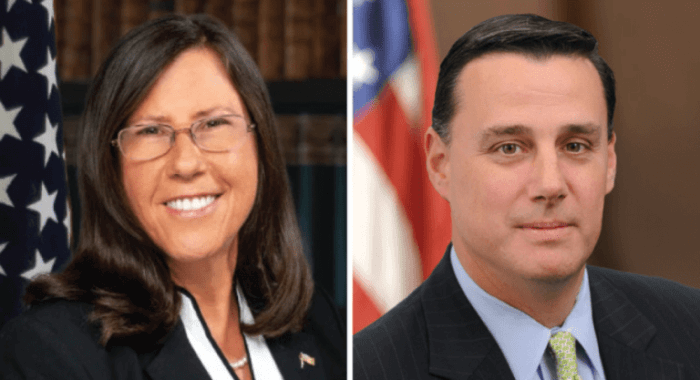 Laura Ahearn and Anthony Palumbo are running for the State Senate seat long held by Senator Kenneth LaValle.