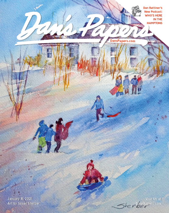 Susan Sterber's art on the cover of the January 8, 2021 Dan's Papers issue.