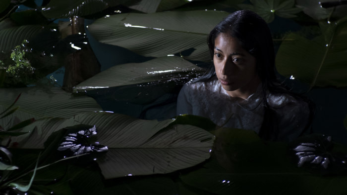 La Llorona is playing at the OLA of Eastern Long Island's Latino Film Festival of the Hamptons