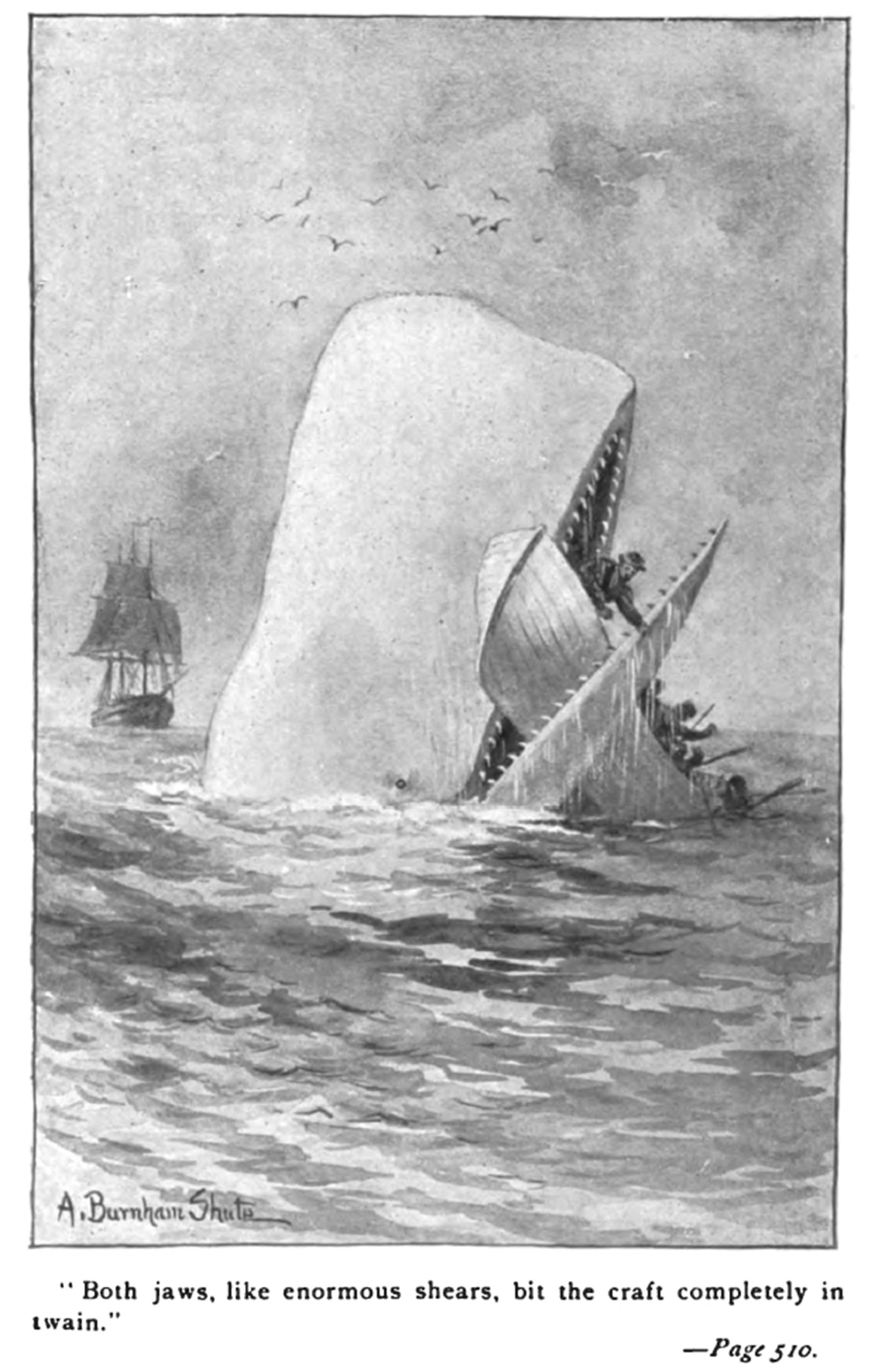 """A page out of """"Moby Dick"""""""